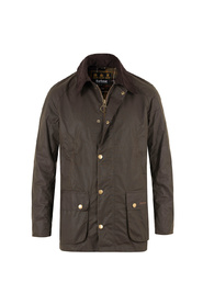 Ashby 3801 Jacket