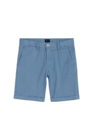 Regular Summer Shorts