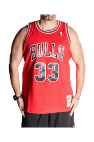 Canotta Chicago Bulls