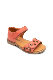 CORAL VELCO+BLOMSTER