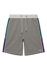 Marty Colorblocked Shorts