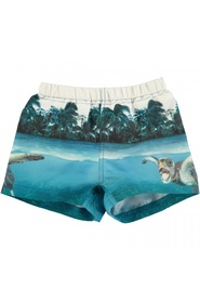 Flerfarget Molo Newton singing turtle badeshorts