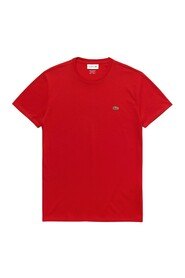 Crew neck t-shirt in cotton jersey