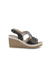 Wedges AS000024
