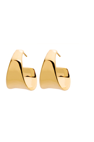 Cambrian Gold Earrings