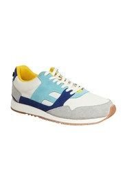Ivy Trainers