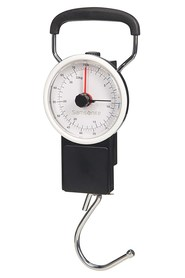 CO1009032 Weight scale