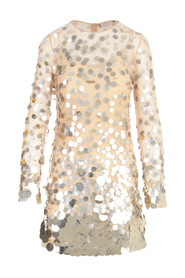 EMBROIDERED PAILLETTES   MINI DRESS