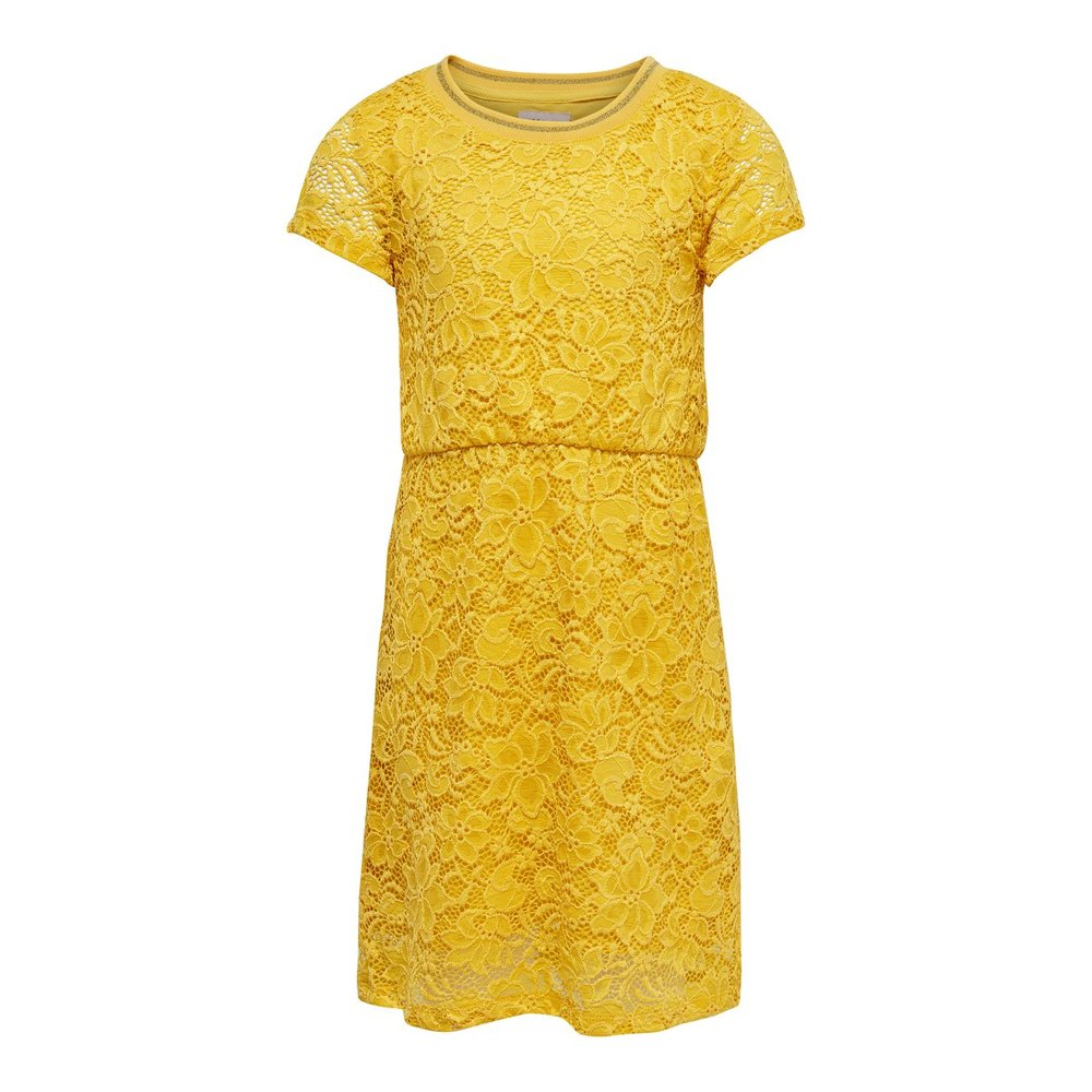 Short sleeved dress lace