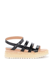Sandalo Abacaxis
