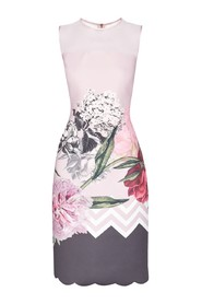 Ted Baker - Arionah - kleed small roze grijs