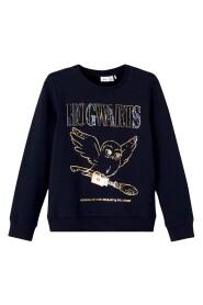 Sweatshirt 13193977