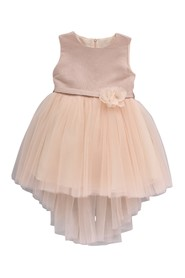 BB203038 Elegant Dress