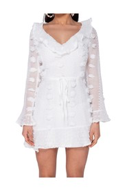 Dobby Frill Detail  Mini Dress