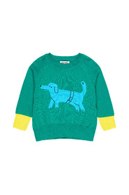 Paul's Dog knit