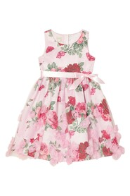 Roses Party Dress