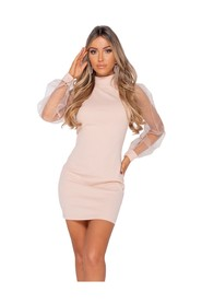 Organza Sheer Puff Long Sleeve Bodycon Mini Dress