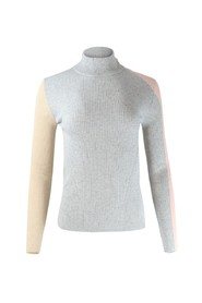 Carisma Knit Turtleneck