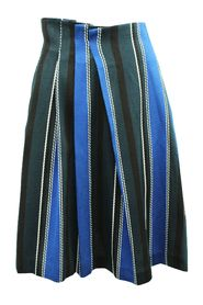 Print Stripes Skirt