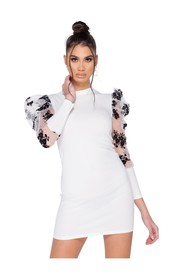 Sheer Floral Print Bodycon Mini Dress
