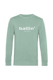 Basic Sweater