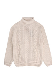 Cable Knit Roll Neck