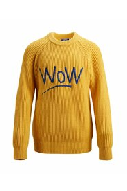 Knitted Pullover Boy's statement