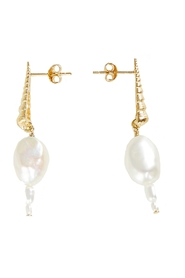 Earrings Turret Shell Baroque Pearl