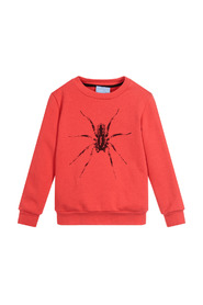 Kids Spider Sweatshirt