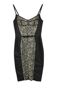 Fitted Dress with Lace Panel