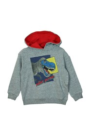 W25497 Hooded Sweater