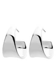 Cambrian Silver Earrings