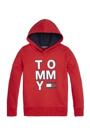 TOMMY HILFIGER KB0KB05479 GRAPHIC HOODIE SWEATER Unisex Boys RED