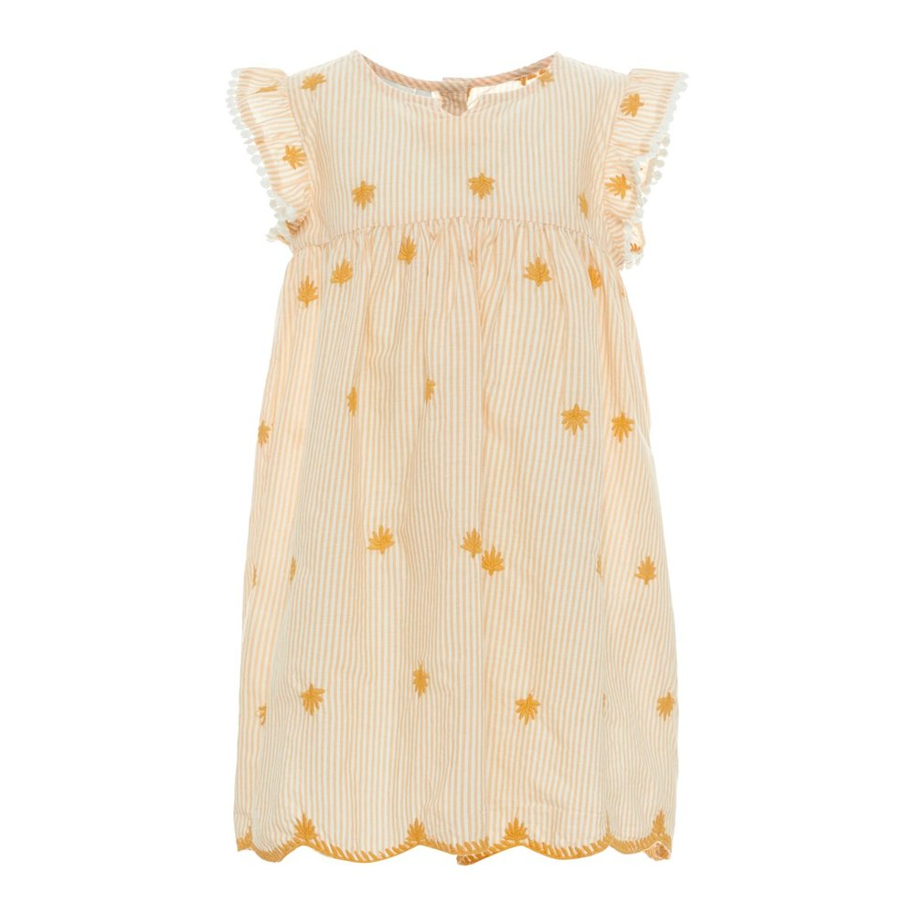 Dress embroidered cotton