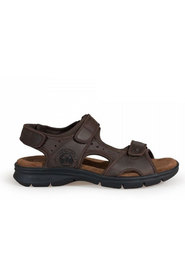 Salton Basics Sandals C1