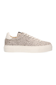 Ted HAIRON 142701 Leather Sneakers