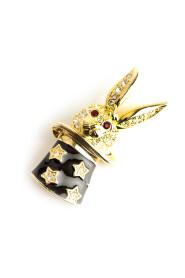 Magic rabbit brooch