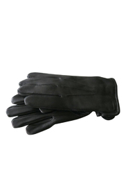 Hestra Men's Glove