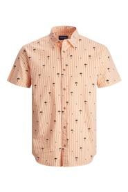 Shirt 12188328