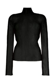 rib turtleneck.translucen