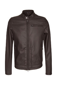 Jacket - IB1454000