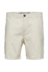Shorts Turtledove