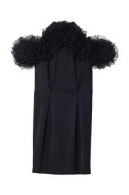 Dress Raven