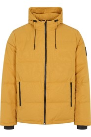 Bailey Down Hooded Jacket