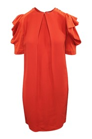 Shift Dress with Puffed Sleeves
