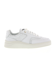 sneakers low top 4.0 gum leather python