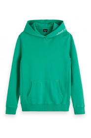 Garment-dyed hoodie with artwork