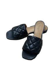 Alva shoes