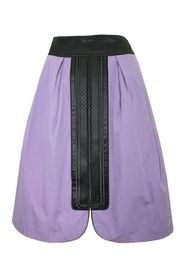 Skirt with Embroidered Panel