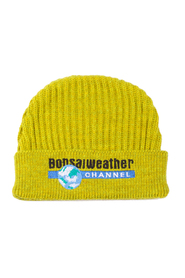 Weather Channel Beanie